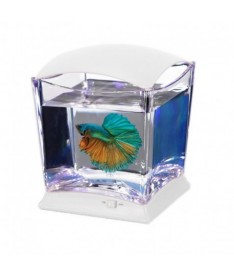 Bettera cubo con led dy-150 blanco 20.7x18.5x20.7cm