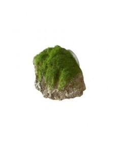 Roca moss stone ventosa xs 9x6x6.5cm