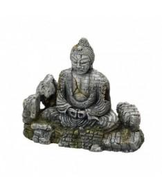 Ebi ruina buddha l 22x10.5x19cm