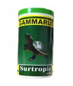 Gammarus surtropic 1200ml 120gr