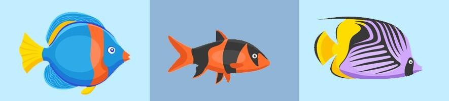 Accesorios para peces ???? El Mundo Animal