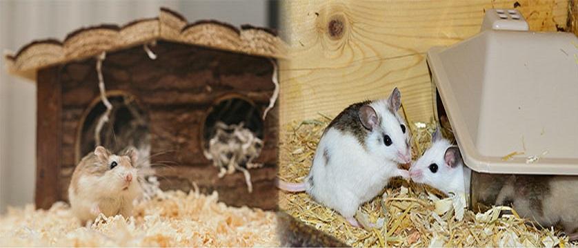 Jaulas para conejos, jaula para hamsters y roedores en general.